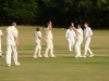 Wantage Cricket Club vs Britwell Salome 2013 173