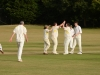 Wantage Cricket Club vs Britwell Salome 2013 174
