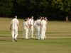Wantage Cricket Club vs Britwell Salome 2013 176