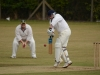Wantage Cricket Club vs Britwell Salome 2013 183