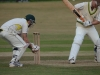 Wantage Cricket Club vs Britwell Salome 2013 204