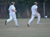 Wantage Cricket Club vs Britwell Salome 2013 255