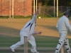 Wantage Cricket Club vs Britwell Salome 2013 282