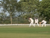 Wantage Cricket Club vs Challow 2011 104