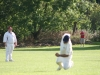 Wantage Cricket Club vs Harwell 2011 062