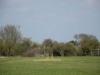 Wantage Cricket Club Tour Of Cambridge 2013 1991