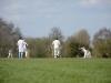 Wantage Cricket Club Tour Of Cambridge 2013 2017