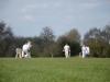 Wantage Cricket Club Tour Of Cambridge 2013 2025