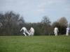 Wantage Cricket Club Tour Of Cambridge 2013 2030