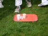 Wantage Cricket Club Tour Of Cambridge 2013 2031