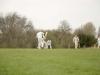 Wantage Cricket Club Tour Of Cambridge 2013 2097