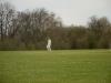 Wantage Cricket Club Tour Of Cambridge 2013 2115