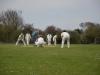 Wantage Cricket Club Tour Of Cambridge 2013 2127